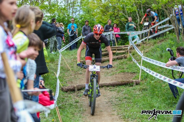 Grici2017_3-1038